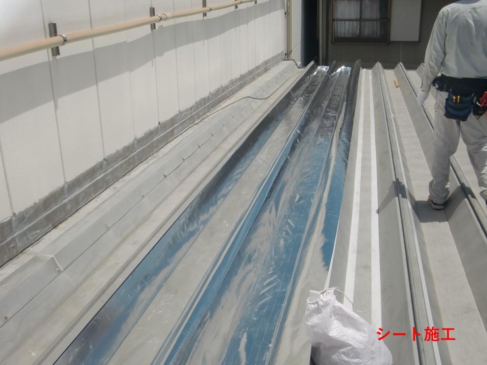 1階建て事務所の折板屋根にご採用。